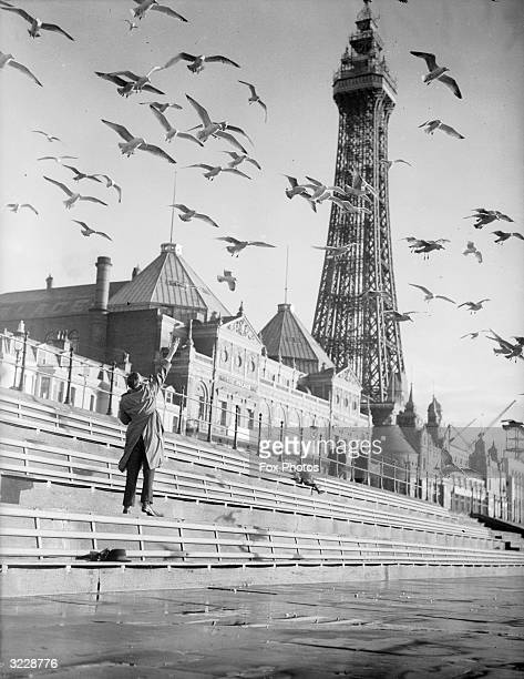 Flocks of seagulls seek refuge from the rough weather at sea and circle round Blackpool Tower in search of food