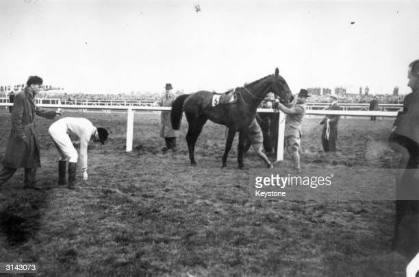 Jockey Dick Francis retrieves his whip after dismounting from the Queen Mother's horse Devon Loch which inexplicably stumbled fifty yards from the...