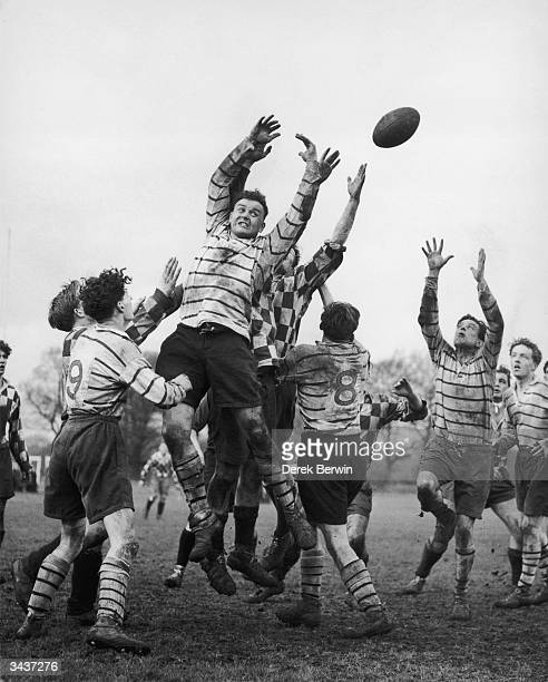 All hands reach for the ball during a lineout during a replay of the Hospital Rugby Cup final between London Hospital Rugby XV and Bart's Hospital XV