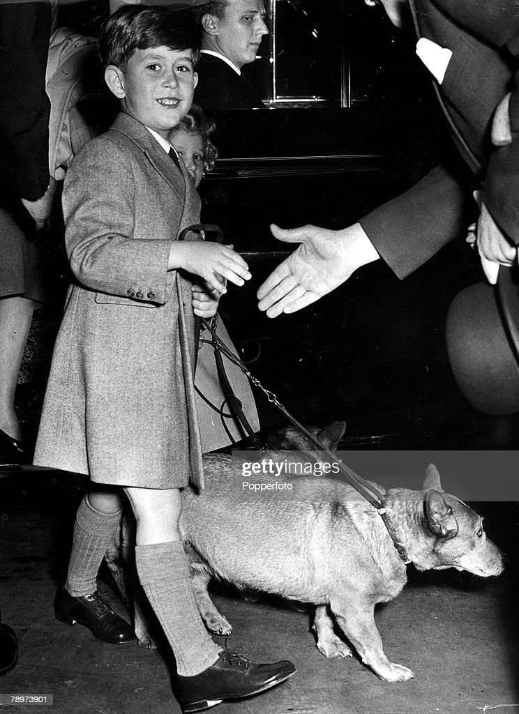 27th May 1955. Prince Charles with pet corgis as he arrives on the platform of Euston station for his and Princess Anne+s witsun holiday at Balmoral. : News Photo
