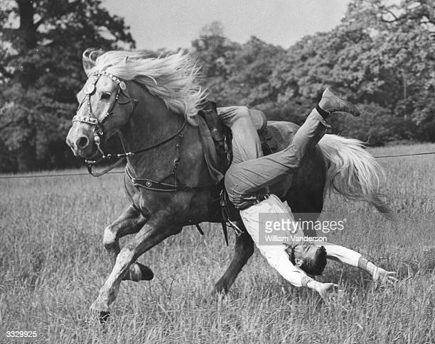 A member of 'Buster Syd's' team of cowboys a troupe of part time stunt riding cowboys from Harlow in Essex practices for their show