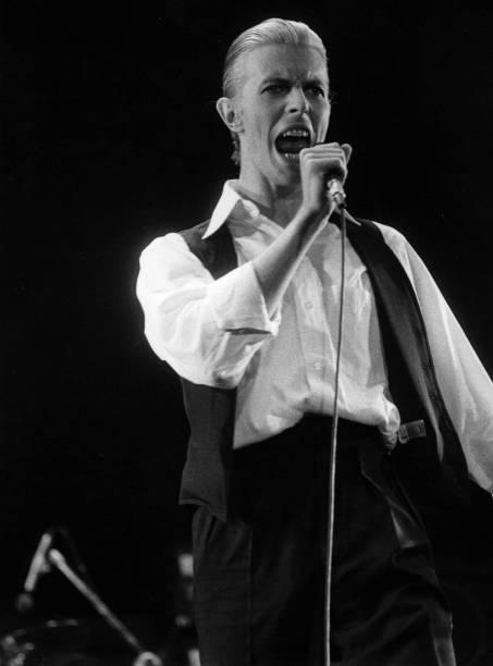 Bowie Sings