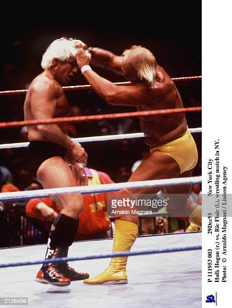 111953 003 29Dec91 New York City Hulk Hogan pulls the hair of Ric Flair during a wrestling match New York City New York December 1991