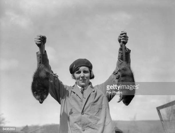 Miss May Hibbert displays two of her musquash or muskrats at Mears Ghyll Fur Farm in Caton These amphibious rodents which secrete a pungent scent...