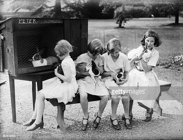 Schoolgirls at The Grove Watford with their pet rabbits