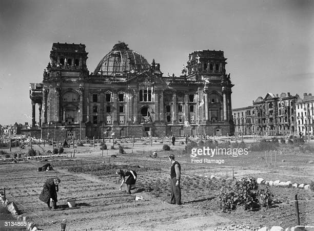 Berliners planting potato seeds in the new allotments in the Tiergarten in front of Berlin's badly damaged Reichstag or old Parliament after World...