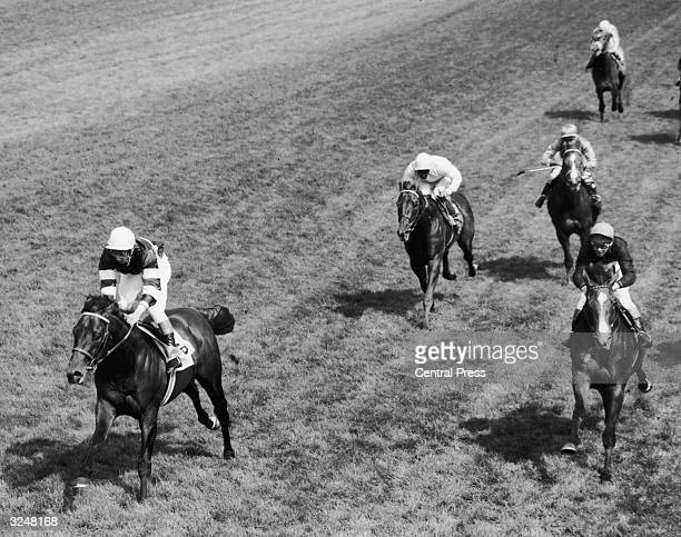 Lester Piggott riding Sir Ivor to victory in the Derby at Epsom. Sir Ivor won from Connaught . In the centre is Remand, who came fourth and behind...