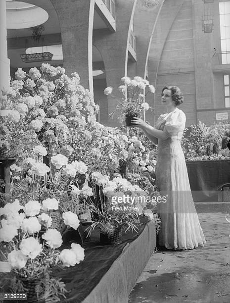 Joan Collier admiring the carnations on display at the 'Flowers in Season' show at the Royal Horticultural Society's Hall in Vincent Square...
