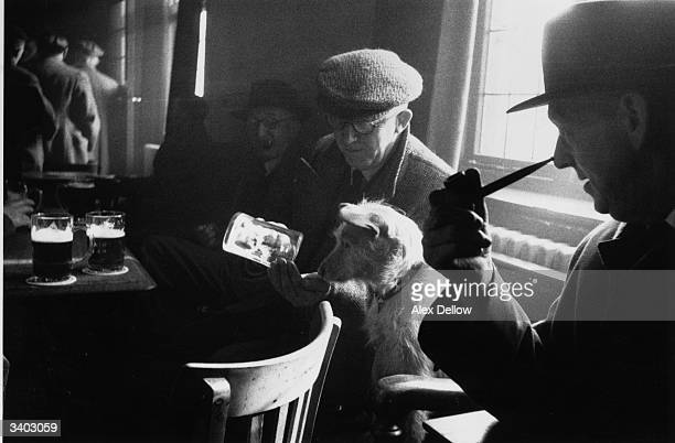 An elderly man showing his dog an empty pint glass at a working men's club in Durham Original Publication Picture Post 7641 Top County For Clubs pub...