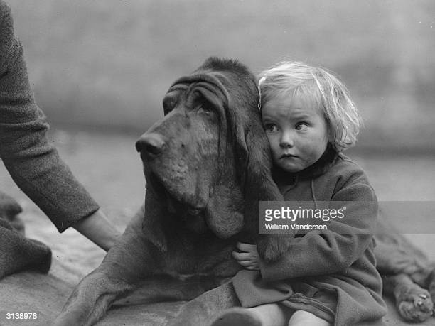 Bloodhound Champion Leo of Reynalton is cuddled by a rather worriedlooking Dorothy Horder