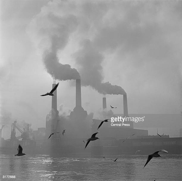 Seagulls drift above the waters of the Thames while in the background the billowing chimneys of Battersea Power Station fill the sky