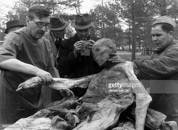 World War, Soviet Union, Katyn massacre 1940: exhumation of corpses by a german guided investigation commission, divestment of one of the corpses,...