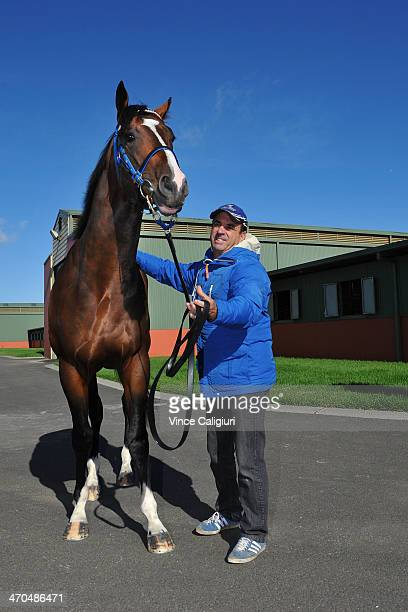 2yr old Chivalry poses for photo with trainer Mark Kavanagh at Flemington Racecourse on February 20 2014 in Melbourne Australia Chivalry will line up...