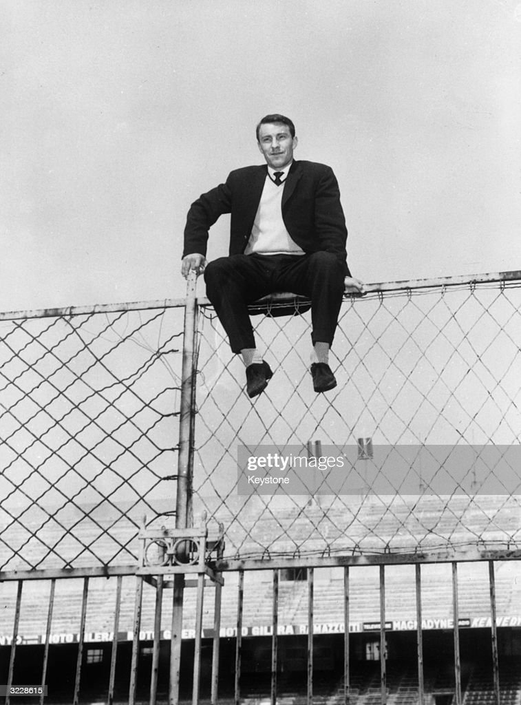 Sitting On The Fence : News Photo
