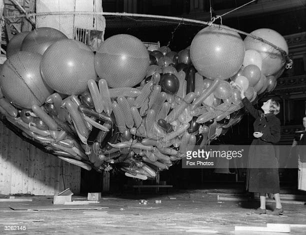 One of the giant nets full of balloons waiting to be raised to the ceiling of the Albert Hall London where the Chelsea Arts Ball will be held...