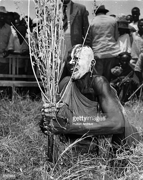 A Kenyan witch doctor performs a ritual as part of the government's effort to flush out the Mau Mau