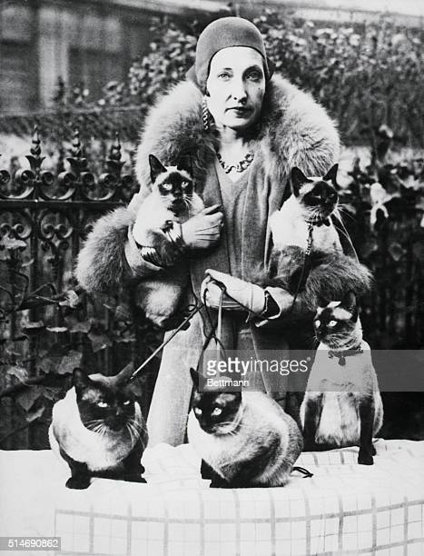 Mrs Frederick H Fleitman of New York with five of the Siamese cats she exhibited at the International Show of the Cat Club and which won first prize