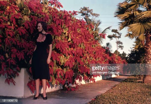 35mm film photo shows a middle-aged woman in a black dress standing on the sidewalk beside a large Poinsettia plant, 1940.