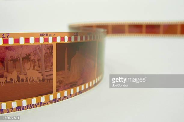 35 mm フィルム