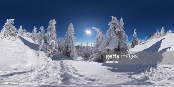 360-degree view of Bavarian winter landscape with snow packed trees, Great Arber, Bavarian Forest , Bavaria, Germany