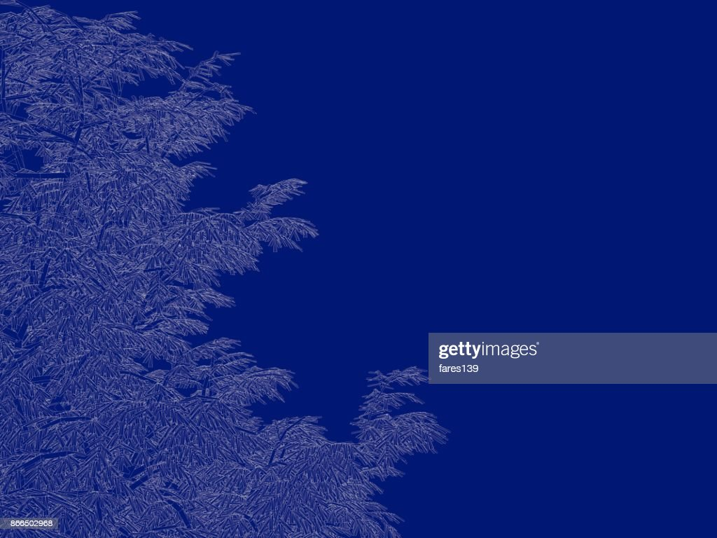 3d rendering of an outlined tree blueprint isolated on blue 3d rendering of an outlined tree blueprint isolated on blue background stock photo malvernweather Gallery