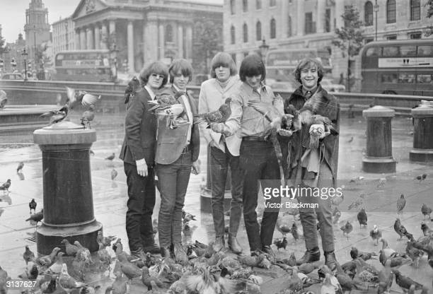 The American band The Byrds from left to right Jim McGuinn Chris Hillman Mike Clarke Gene Clark and Dave Crosby feeding the pigeons whilst visiting...