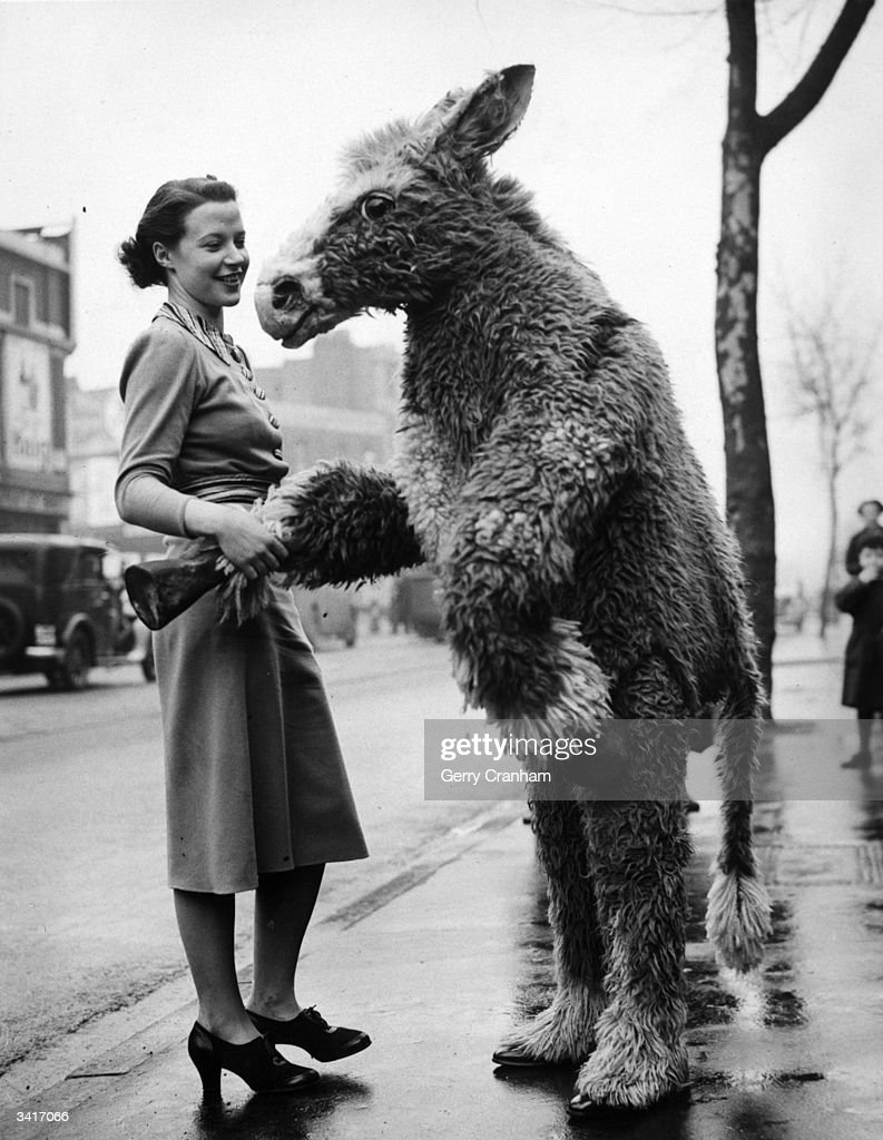 Charlie Jass in pantomime donkey costume accosts a young lady in Kennington Road, London.