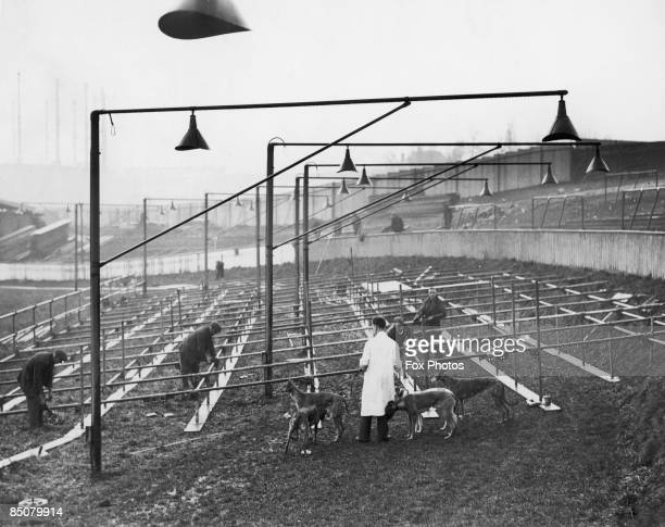 Extra seats are erected on the greyhound track at Eastville Bristol to accommodate the crowd for Bristol Rovers' cup tie match with Arsenal on...