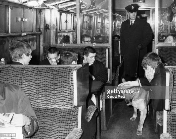 Spurs supporters on a football special are rather subdued as a policeman and his dog patrol the train