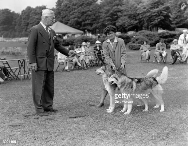 EXCLUSIVE Fulllength image of Mr David Wagstaff the judge awarding Mrs Milton Seely with best brace in show for her two Siberian huskies at the North...