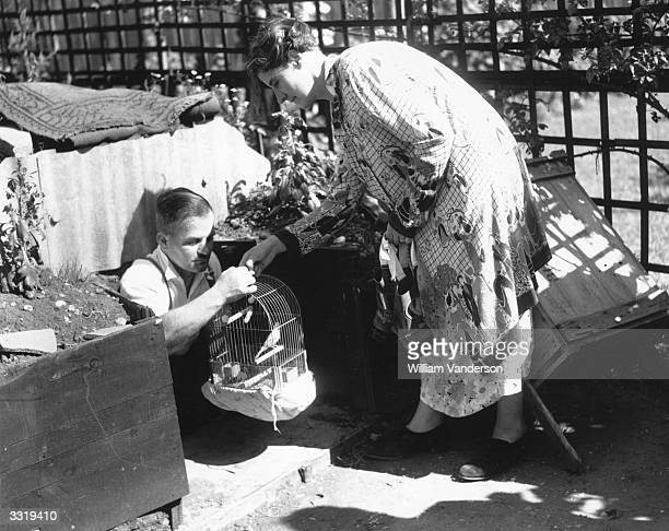 A couple in the East End of London take their caged canary into the air raid shelter with them when the alarm is sounded