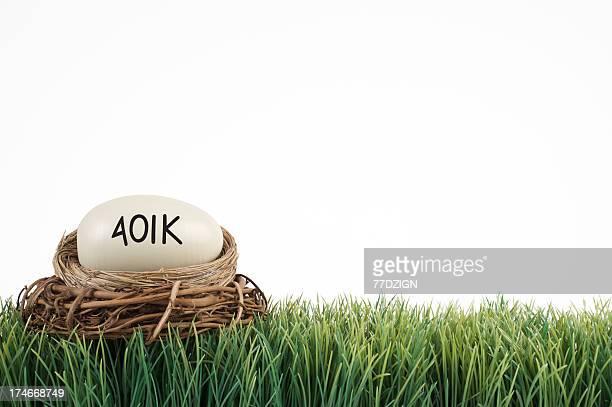 401k nest background