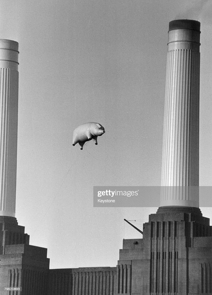 Pink Floyd's Pig : News Photo