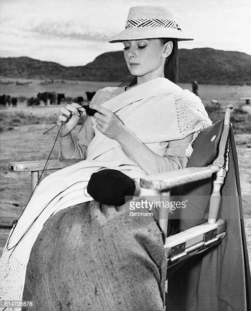 4/18/1959Durango Mexico Tending to her knitting Audrey Hepburn gets started on a black cashmere sweater on location at Durango Mexico She's filming...