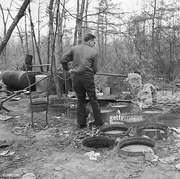 Berlin, NJ: A revenue agent uses a long handled shovel to reach into barrels containing sour mash for use in the moonshine still at left in...