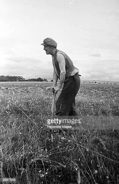 Labourer pauses by the site of an Iron Age camp high up on the Berkshire Downs in southern England. Original Publication: Picture Post - 2058 -...