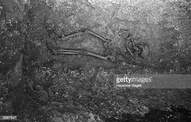 The skeleton of a man who died in AD 300 lying in an Iron Age dig on the Berkshire Downs in southern England. Original Publication: Picture Post -...