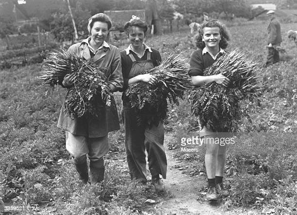 Landgirls with armfuls of carrots at Backford Worcestershire