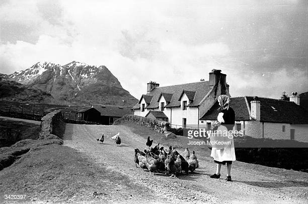 A woman feeding her hens in the street of a Scottish village The 'Road to the Isles' described in the traditional Scottish song runs across the Great...