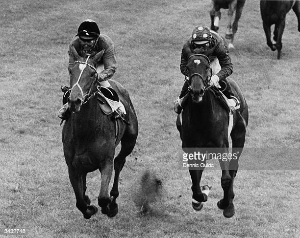 Scottish jockey, Willie Carson, riding the Queen's horse 'Dunfermline' to victory in the Oaks at Epsom.
