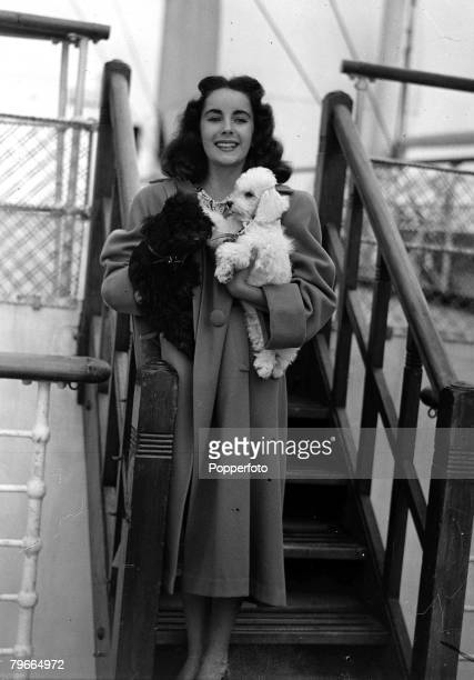 4th September 1947, Southampton, England, US actress Elizabeth Taylor is pictured on board the liner Queen Mary carrying her two French Poodle dogs,...