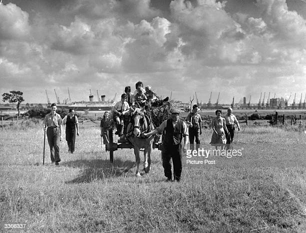 Farmer near Southampton brings his harvest in with the help of holidaymakers who had come to see the ship, the Mauretania. Original Publication:...