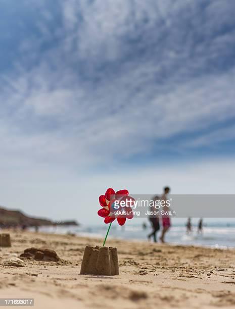 50mm of summer - s0ulsurfing fotografías e imágenes de stock