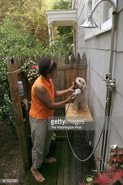 7/19/2006 8911 57th Ave Berwyn Heights MD Carol Cissel gives a bath to her CockAPoo Max in their outdoor shower at their Berwyn Heights Md home on...