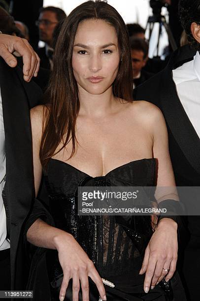 58th Cannes Film Festival Stairs of 'Joyeux Noel' in Cannes France On May 16 2005Vanessa Demouy