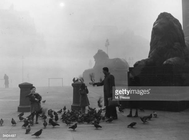 A family feeding the famous pigeons on a foggy morning in London's Trafalgar Square in front of two of Landseer's lions
