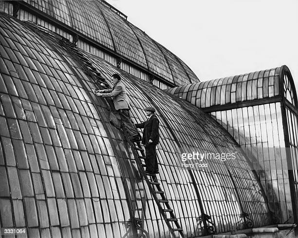 Mr Fred Bissell and Mr W Turner replace panes of glass on the Great Palm House at Kew Gardens in London