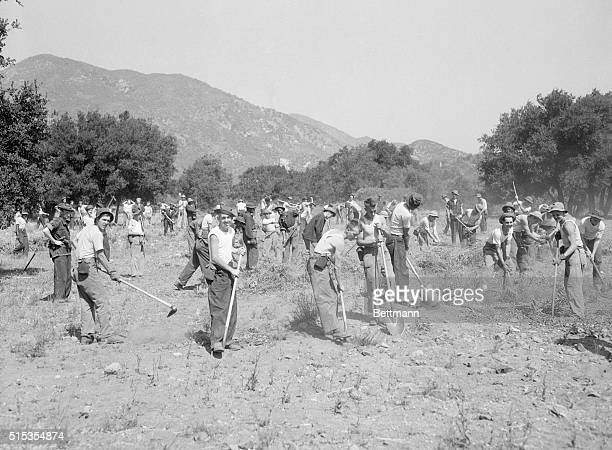 6/18/1933Lancaster CA Scene from life in one of the Franklin D Roosevelt reforestation camps in Lancaster California where 200 men from the State of...