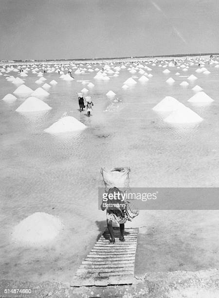 6/24/1957Manaure Colombia A view of the salt beds at Manaure on the northern coast of Colombia where more then 2000 Guarjura Indians and their...