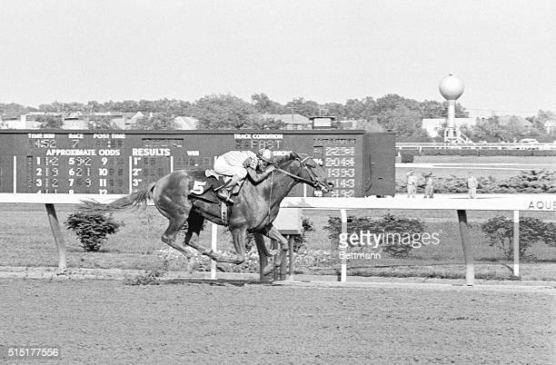 Chateaugay literally flies home the winner of the Belmont Stakes at Aqueduct Racetrack The Kentucky Derby winner beat Preakness winner Candy Spots...